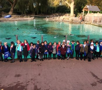 Ambler children enjoy classifying animals at the London Zoo